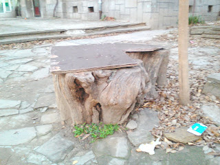 yambol, seating, tree trunk,