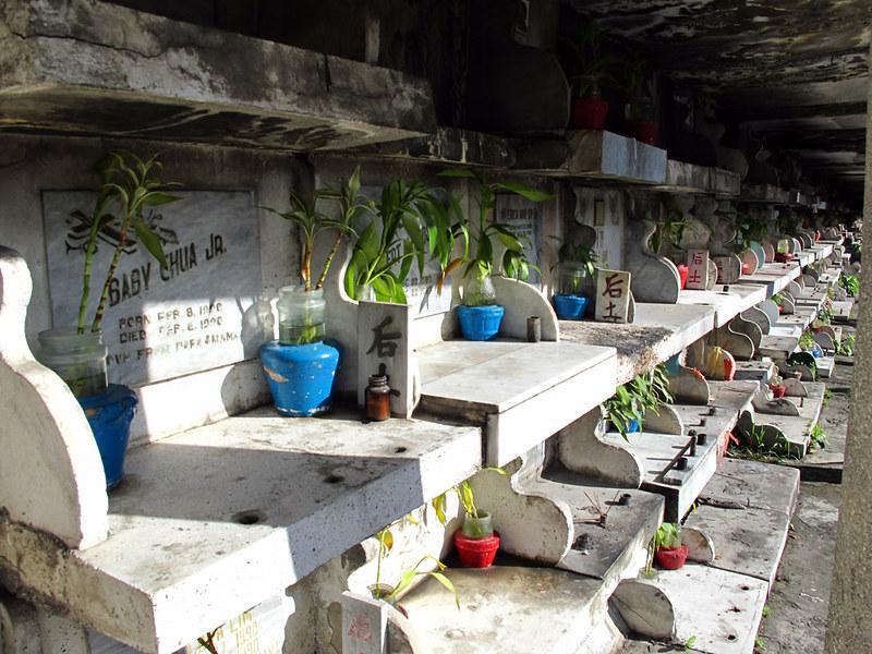 philippines living in cemetery, manila north cemetery records, manila north cemetery live stream