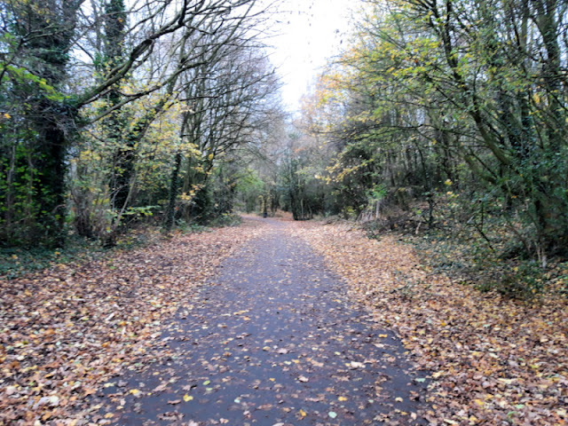 A footpath with fallen golden leaves to either side