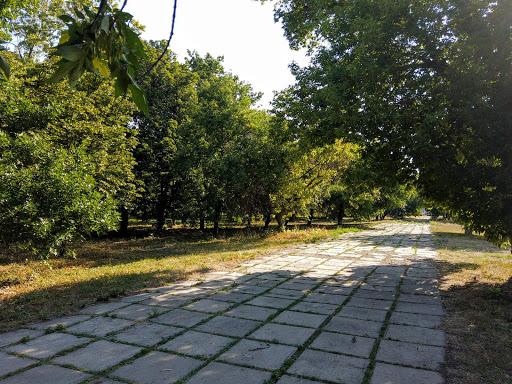 Новоподгородное. Парк