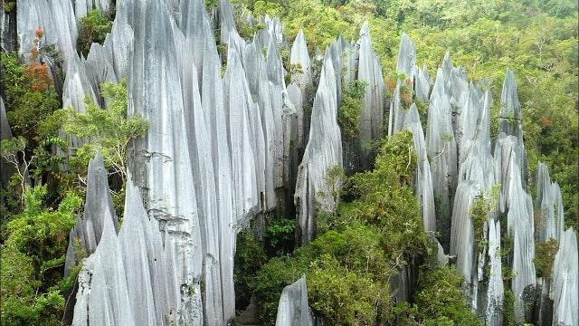 منتزه غونونغ مولو الوطني