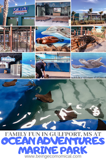 Family Fun At Ocean Adventures Marine Park   Things To Do In Gulfport, Mississippi