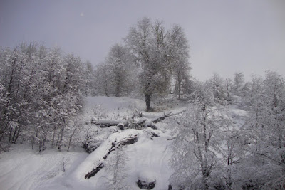 Piedras Blancas - Bariloche