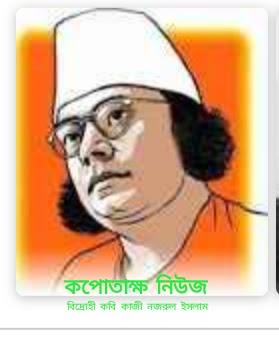 জাতীয় কবি মহারাজনীতিক ছিলেন : মোমিন মেহেদী