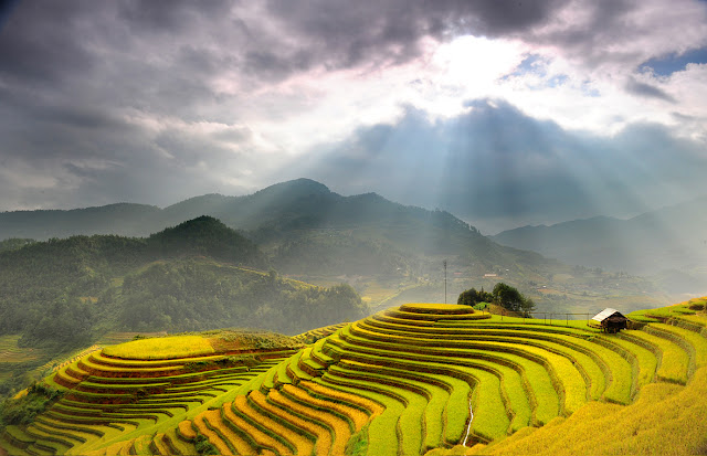 Mu Cang Chai with the spectacular rice terraces