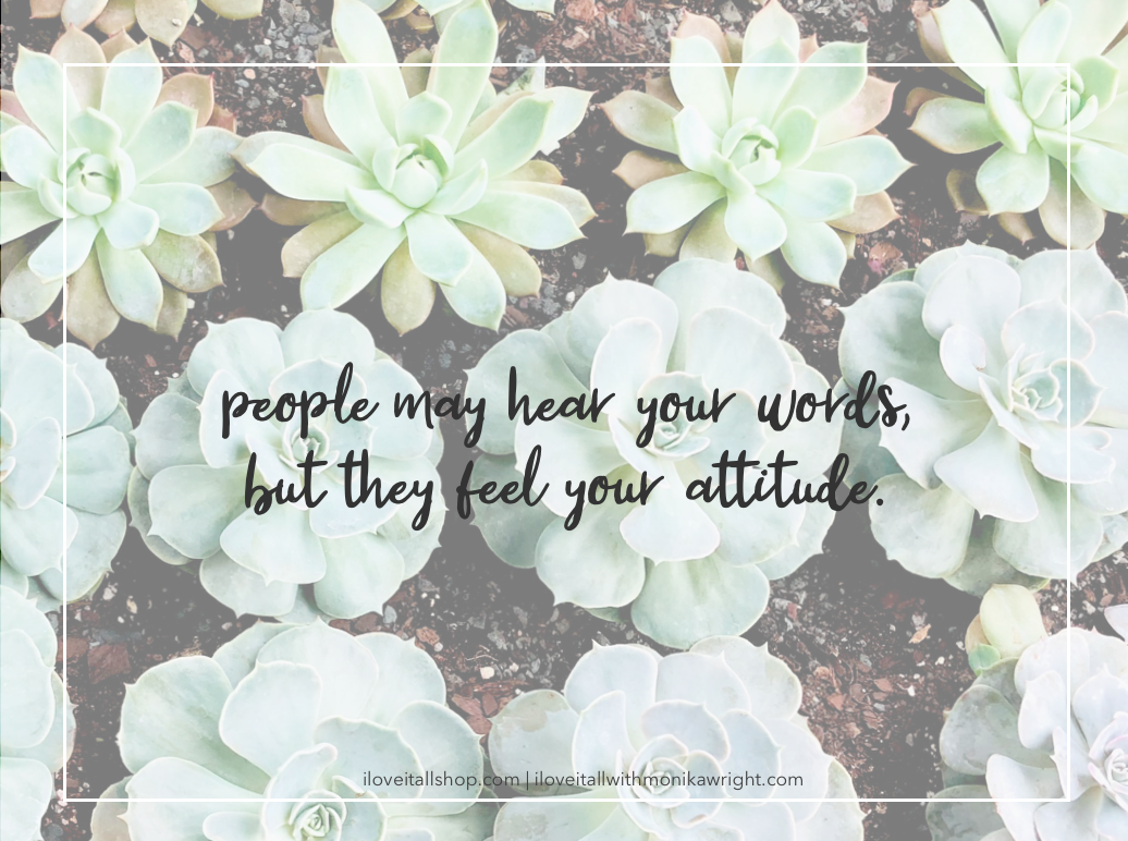 #quote #quotes #attitude #attitude quote #words #mindset #Sunday Photos #succulents #good words