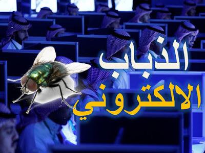 الذباب الإلكتروني السعودي يحرف كلمة لوزير الداخلية التركي