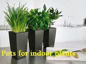 Following Are The Specific Advantages Offered By Plastic Plant Pots As Compared To Other Types Of Planters