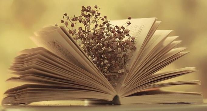 Đọc sách như một thói quen
