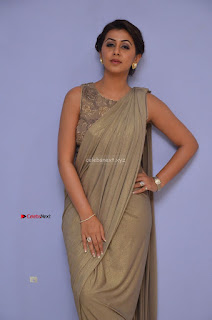 Nikki Galrani in Saree 105.JPG