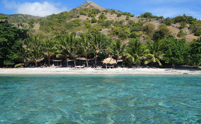 Xvlor Atauro Island for best scuba diving and watching pigeon life in Timor Leste