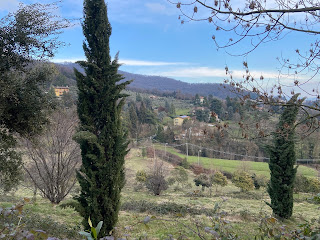 View east from Via alla Zarda across lower Maresana.
