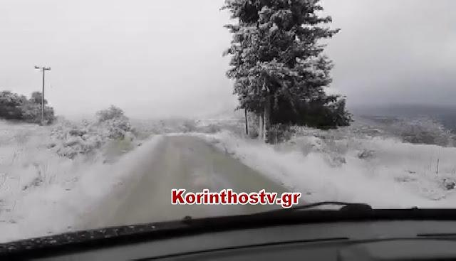 Μεγάλη χιονόπτωση στο Αγιονόρι Κορινθίας - Μόνο με αντιολισθητικές αλυσίδες η κυκλοφορία (βίντεο)
