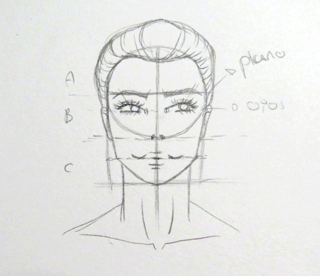 Dibujo del busto para complementar, formado por el cuello y la clavícula