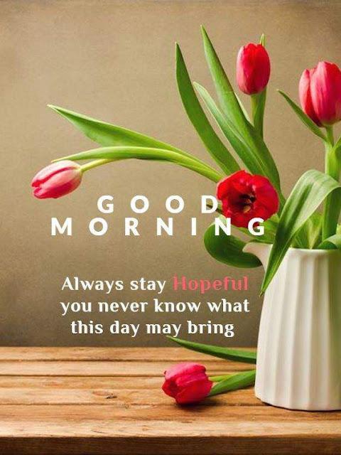 Good Morning flower Wishes Beautiful Image