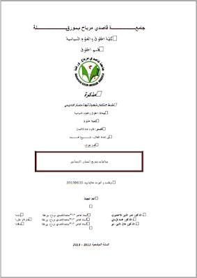 مذكرة ماستر: مخالفات تشريع الضمان الاجتماعي PDF
