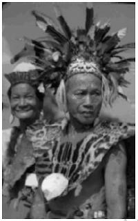 Seni Bangunan, Kerajinan, Model Pakaian dan Bentuk Rumah Adat Masyarakat Suku Dayak