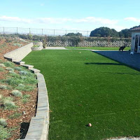 Greatmats dog artificial turf