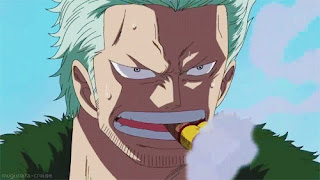 7 Fakta Smoker One Piece