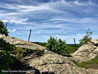 The Overlook, rattlesnake rocks, rock climbing, cragging, boston