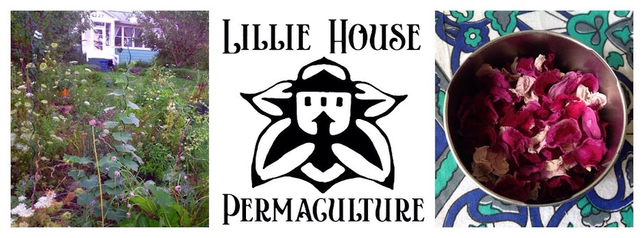 Lillie House Permaculture