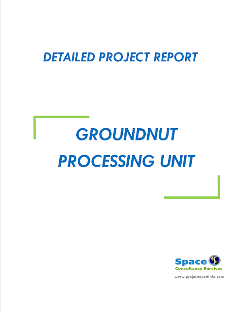 Project Report on Groundnut Processing Unit