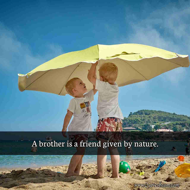 Quotes On Brother