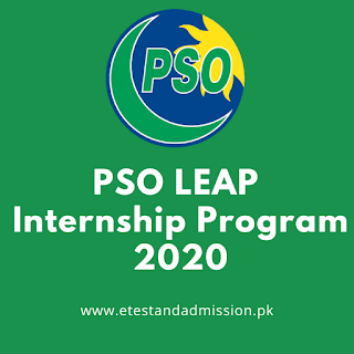 PSO LEAP Internship Program 2020