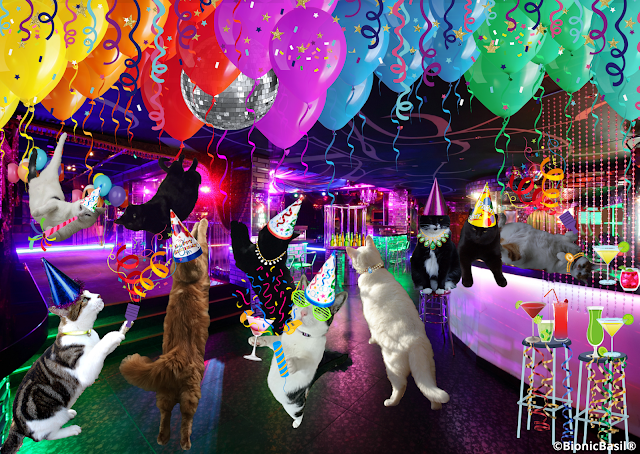 BBHQ Night Club  ©BionicBasil®