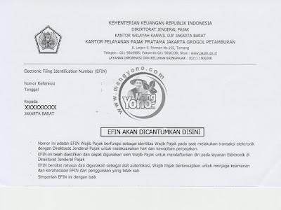 EFIN dari KPP
