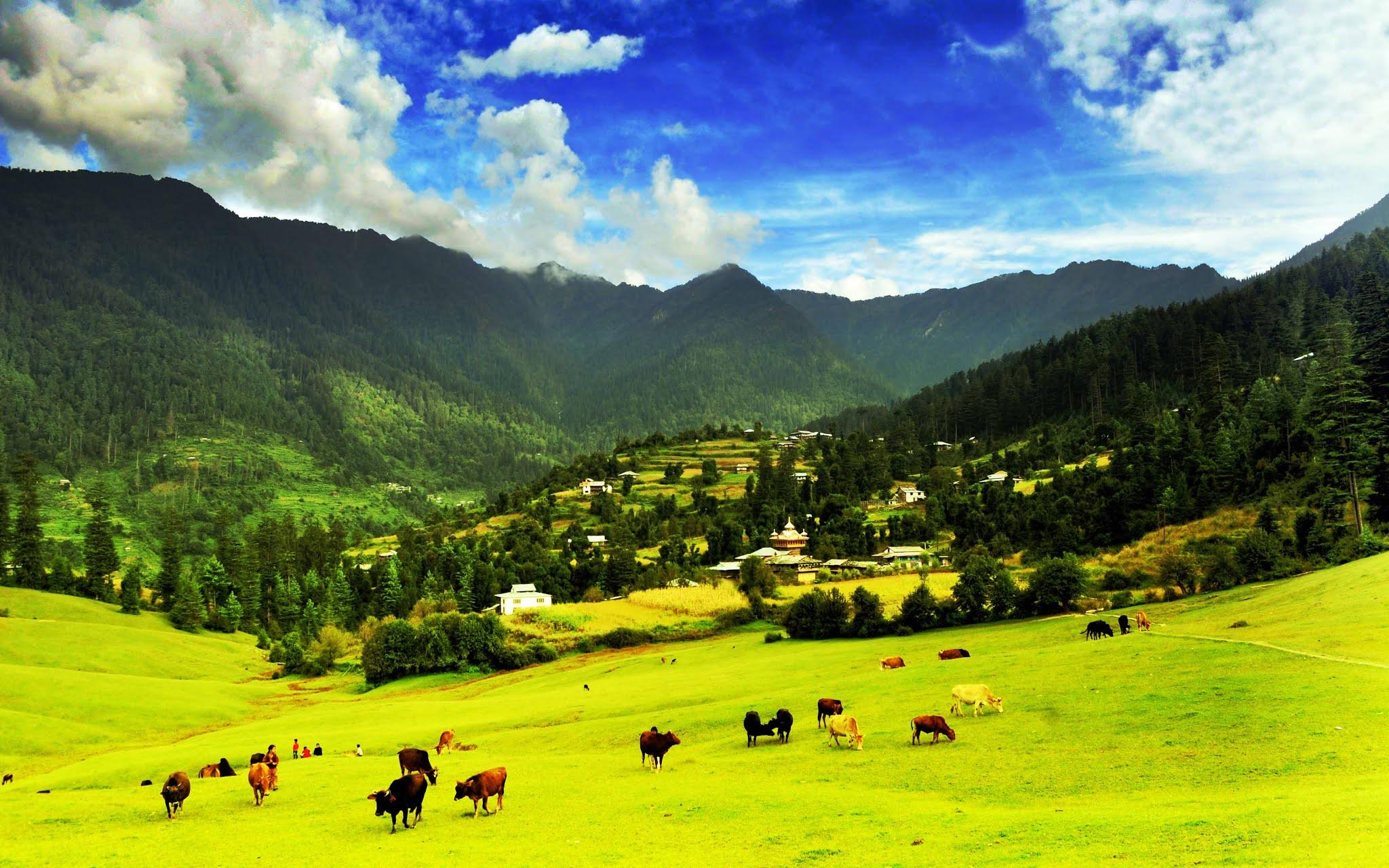 Великий Гималайский национальный парк