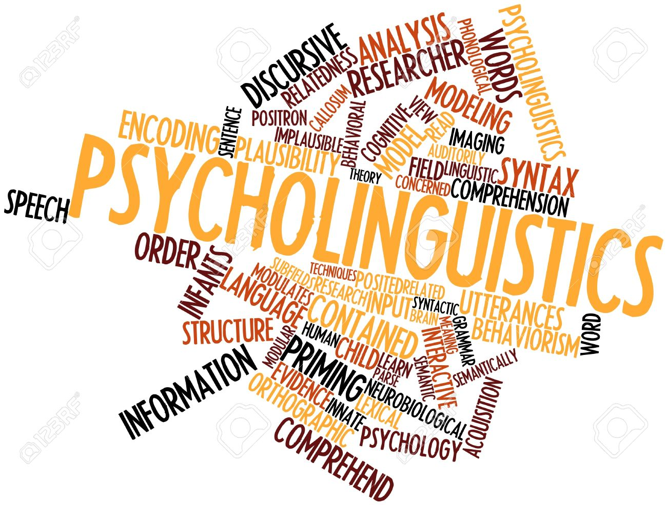 study of psychology understanding mental images Read this essay on the importance of biology in the study of has brought us to a deeper understanding of the psychology of mental images than compound.