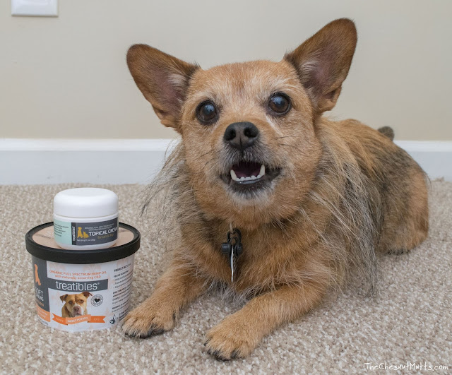 Treatibles CBD pet chews and topical cream