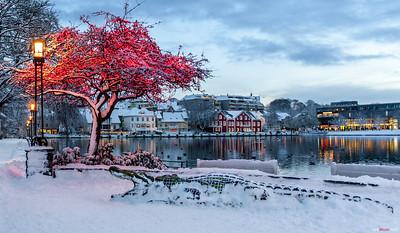 Experience the Julemarked and joyful Norwegian Christmas market