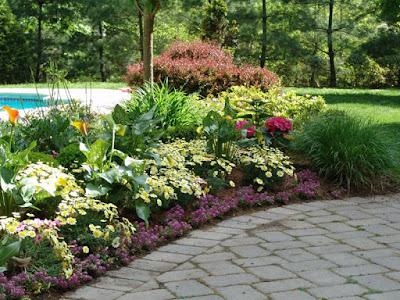 Important Parts in Perennial Garden Ideas