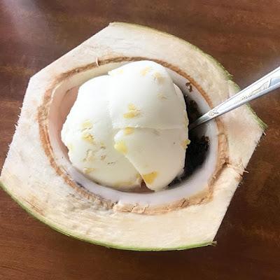 cara membuat es krim di rumah