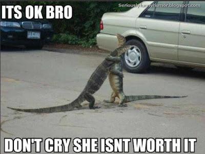 aligator-hug-bro-dont-cry-she-isnt-worth-it
