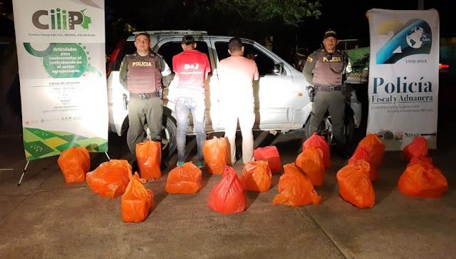 FRONTERA: 780 kilos de queso de contrabando fueron  incautados en Arauca-Colombia provenientes de Venezuela.