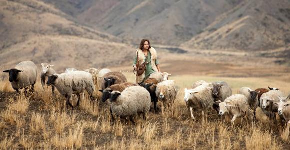 davi-cuida-das-ovelhas
