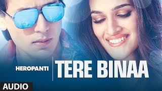 Tere Bina Lyrics - Heropanti - Mustafa Zahid