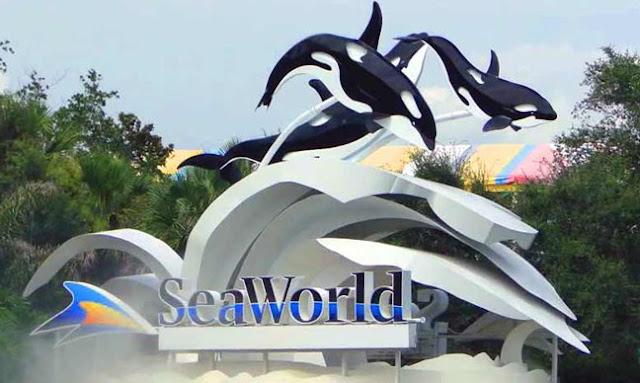 Ticket Masuk Seaworld Ancol