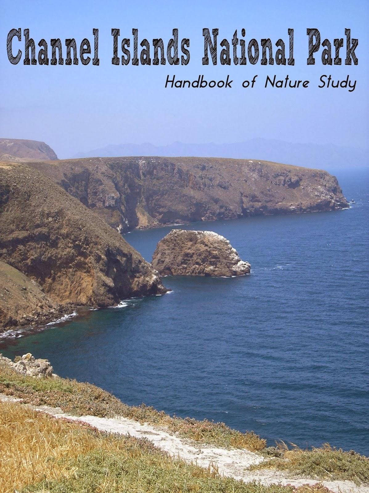 http://handbookofnaturestudy.blogspot.com/2008/06/channel-islands-national-park.html