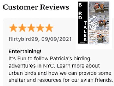 """Screenshot of a review for """"BIRD TALES."""" Info for the book is @ https://apple.co/3oF2CX8"""