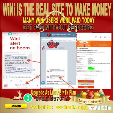 How am making ₦10k daily on wini income without referral