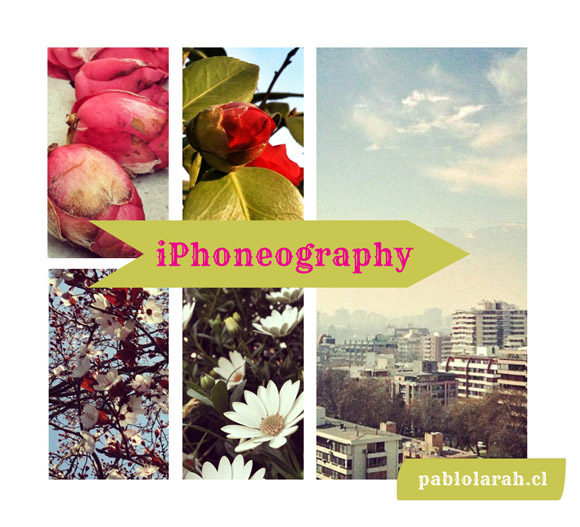 iPhoneography: Cherry Blossoms and Buildings September 2012 Pablo Lara H