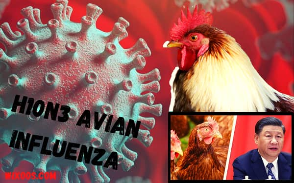 First human case of H10N3 avian influenza confirmed in China