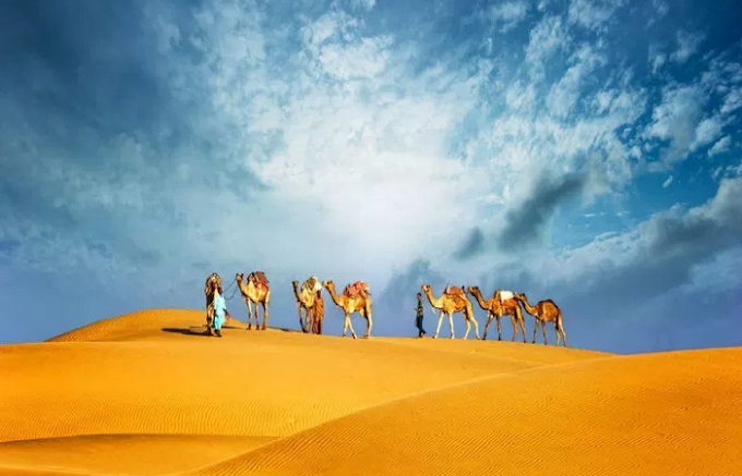 Why Desert Safari Activities are the most preferred one