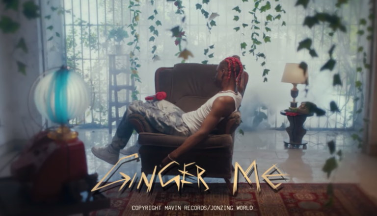 "Rema – ""Ginger Me Video"" #Arewapublisize"