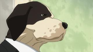 ヒロアカ   警察 犬   面構犬嗣 Tsuragamae Kenji   DOG Police Force   僕のヒーローアカデミア アニメ   My Hero Academia   Hello Anime !