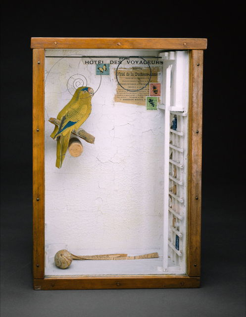 Joseph Cornell assemblage with parakeet